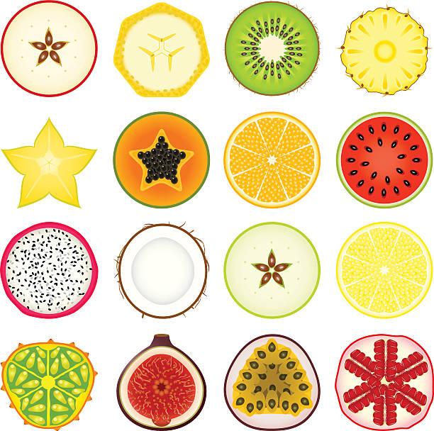 bildbanksillustrationer, clip art samt tecknat material och ikoner med icon set fruits - kivik