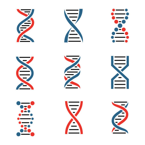 dna icon set isolated on a white background. - dna stock illustrations, clip art, cartoons, & icons