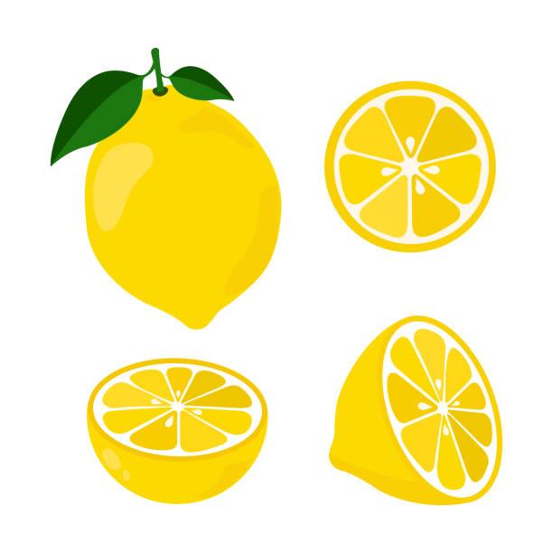 ikona zestaw cytryny, ilustracja wektorowa na białym tle. cały owoc i pokroić na kawałki. owoców cytrusowych. - cytryna stock illustrations
