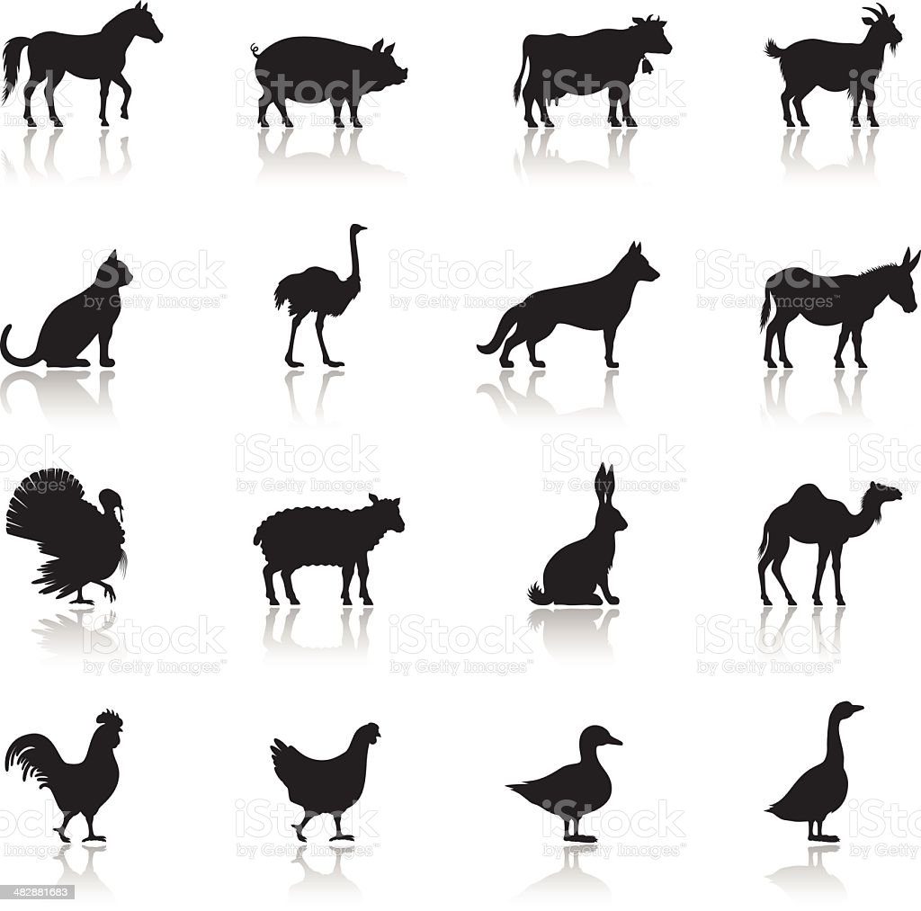 Icon set of farm animals on white background vector art illustration
