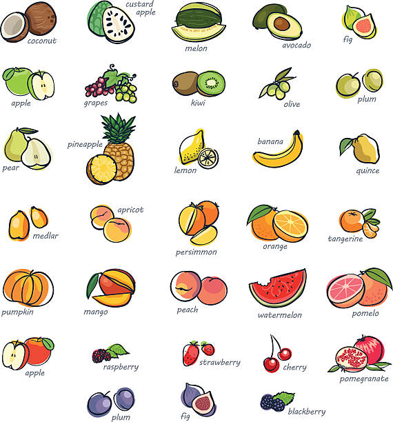 Icon set of fruits Colorful icon set of hand drawn fruits fruit drawings stock illustrations