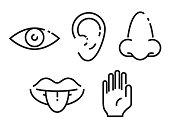 Icon set of the five human senses. Simple, minimal line icons vector illustration.