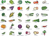 Icon set of vegetables