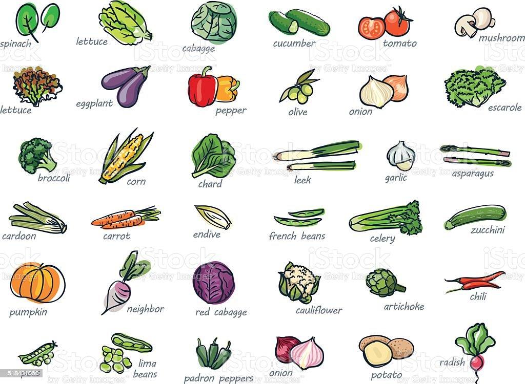 Icono Conjunto de verduras - ilustración de arte vectorial