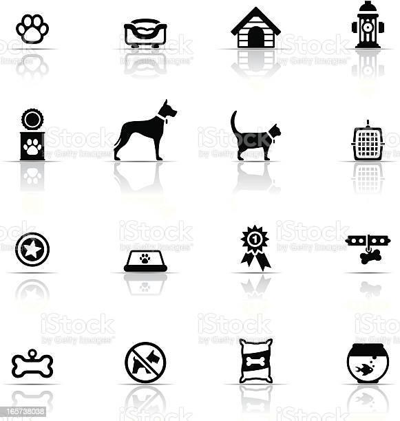 Icon set pets vector id165738038?b=1&k=6&m=165738038&s=612x612&h=ebflfizhux7ephyhnyanjclgvipzzrn q 3ln am  w=