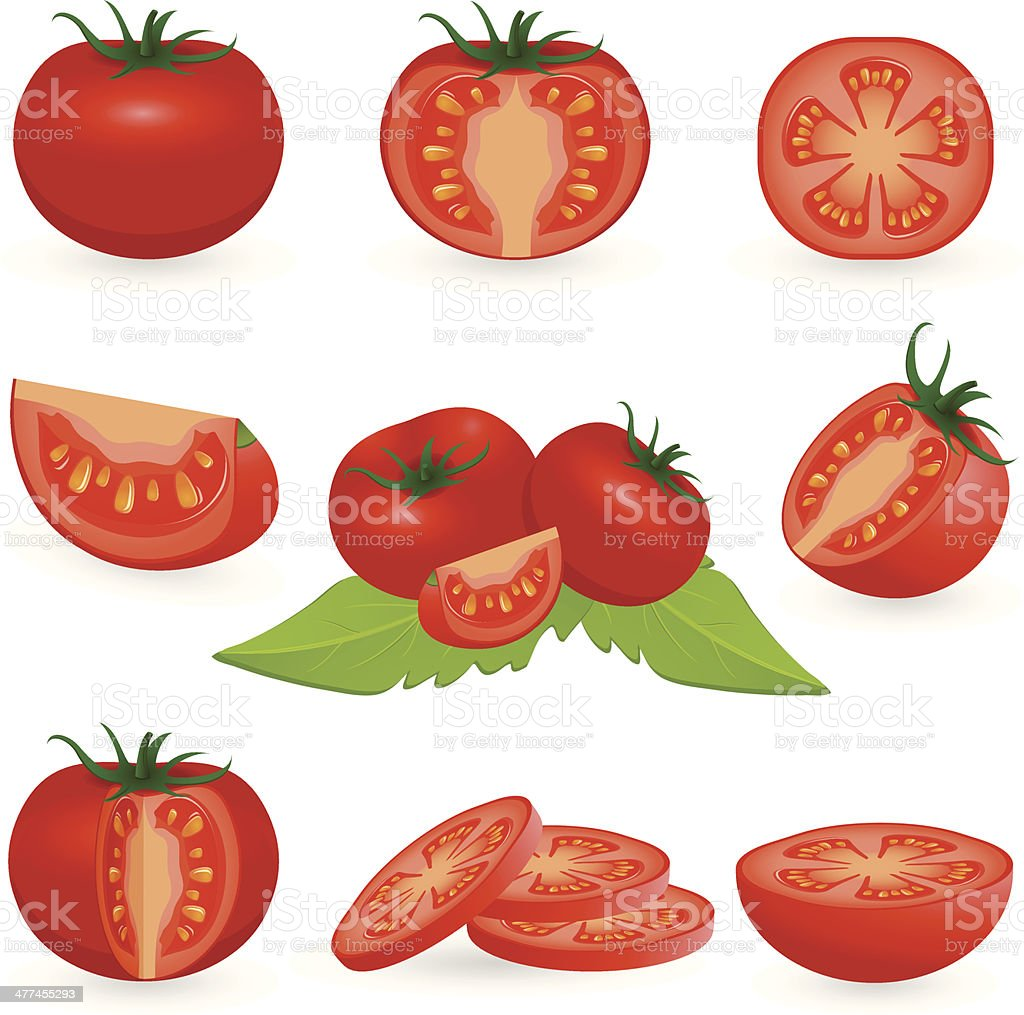 Icon Set Tomato vector art illustration