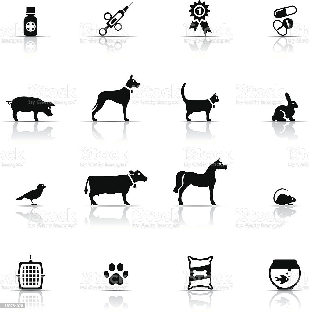 Icon Set, Veterinary vector art illustration