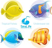 Icon set with tropical fishes
