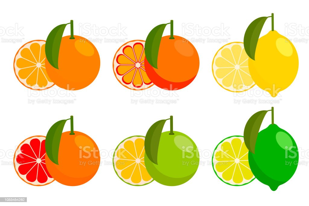 icon set with vector citrus. vector illustration vector art illustration