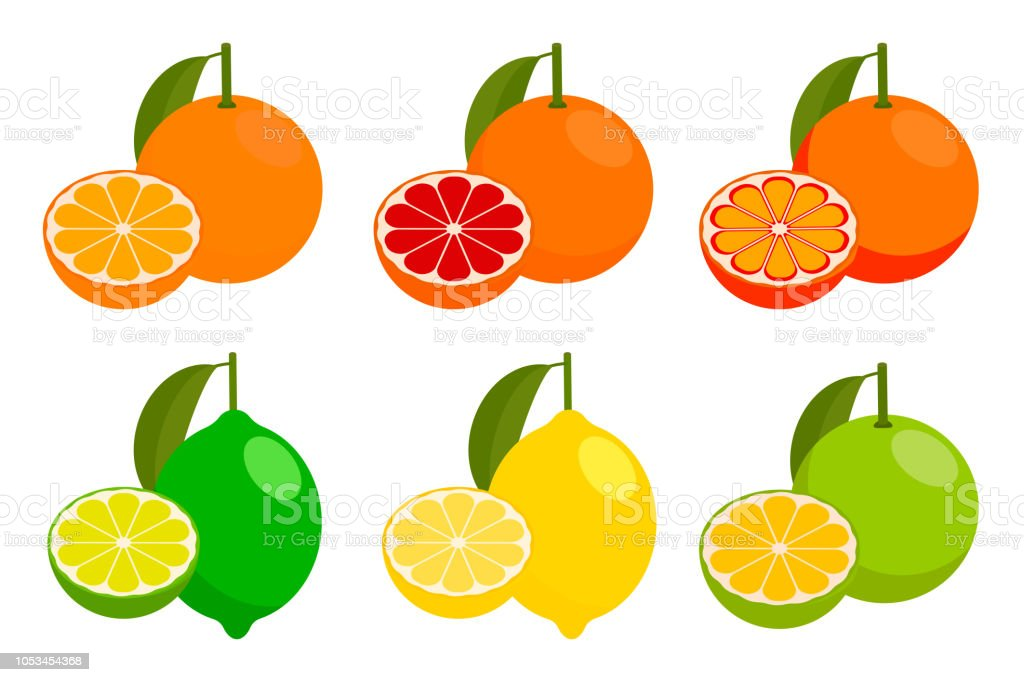 icon set with vector citrus. vector illustration. vector art illustration
