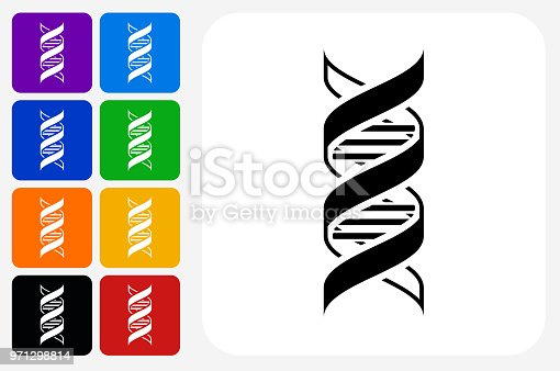 DNA Icon Square Button Set. The icon is in black on a white square with rounded corners. The are eight alternative button options on the left in purple, blue, navy, green, orange, yellow, black and red colors. The icon is in white against these vibrant backgrounds. The illustration is flat and will work well both online and in print.