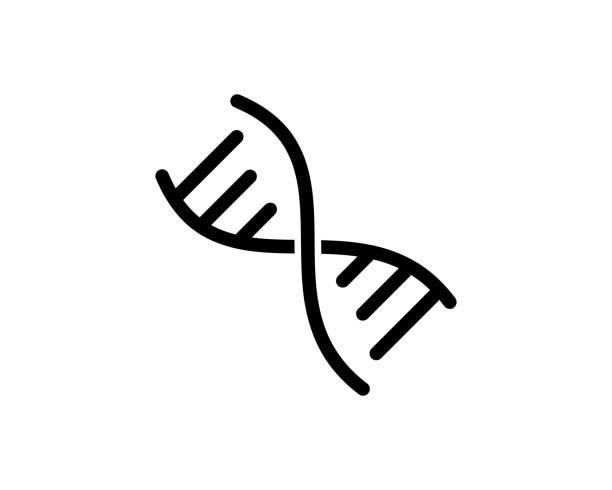 DNA Icon Vector   Template Illustration Design DNA Icon Vector   Template Illustration Design dna stock illustrations