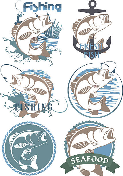 symbole fisch bass - seehecht stock-grafiken, -clipart, -cartoons und -symbole