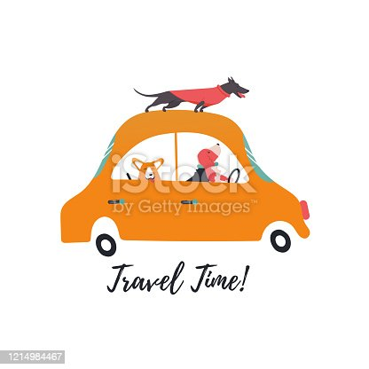 Design template card with funny dogs on retro transport. Icons of a car, corgi, basset hound, dachshund.
