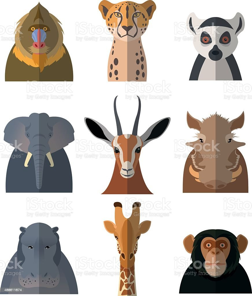 Icons of african animals3 vector art illustration