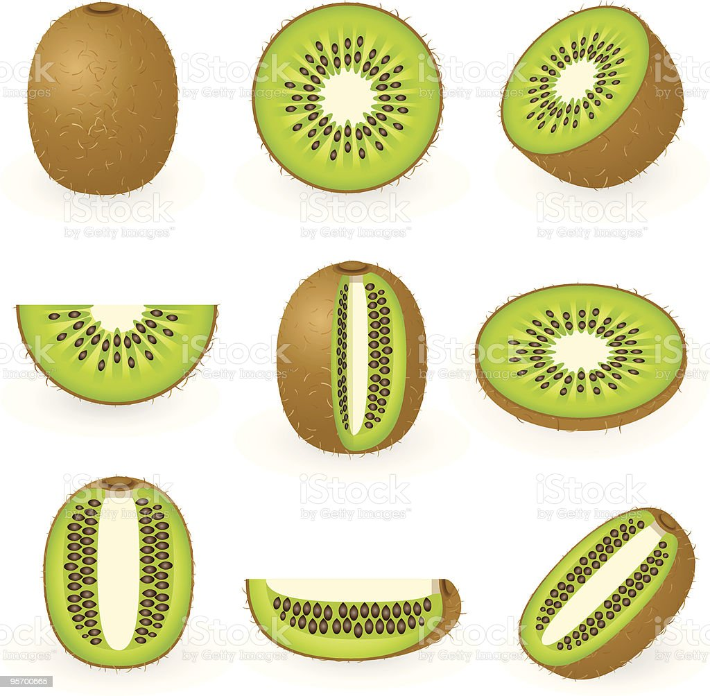 Icons of kiwi fruit in nine different partial sections vector art illustration