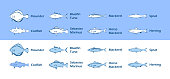 Icons of Sea Fish