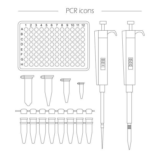 bildbanksillustrationer, clip art samt tecknat material och ikoner med ikoner av standard pcr-utrustning - test tube