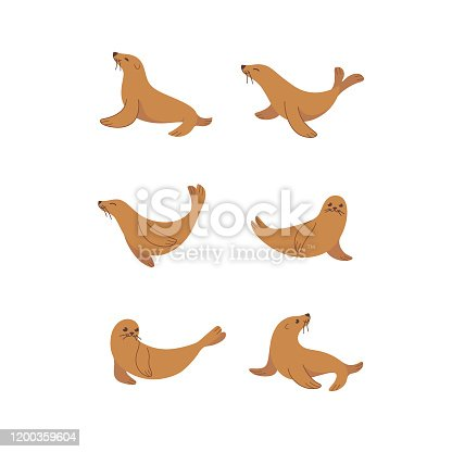 Cartoon seal sketch line icon. Cute animals icons set. Childish  print for nursery, kids apparel, poster, postcard, pattern.