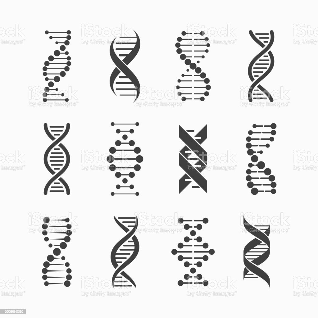DNA icons set vector art illustration