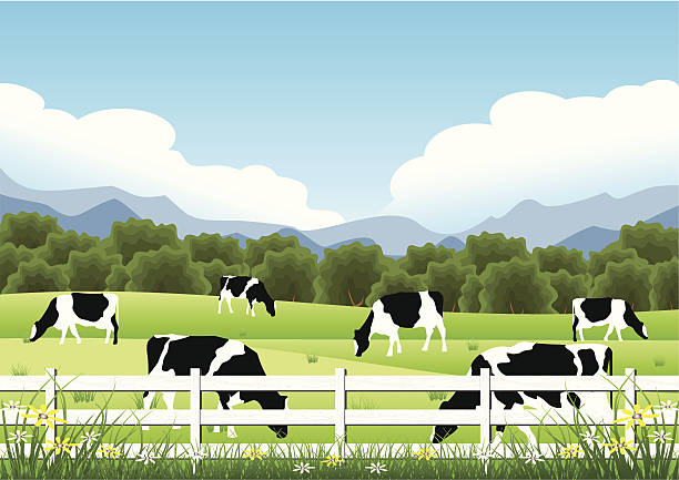 idyllic farm scene - cow stock illustrations, clip art, cartoons, & icons
