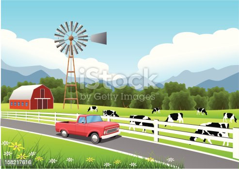 Holstein Cattle and Old Windmill in a Field.