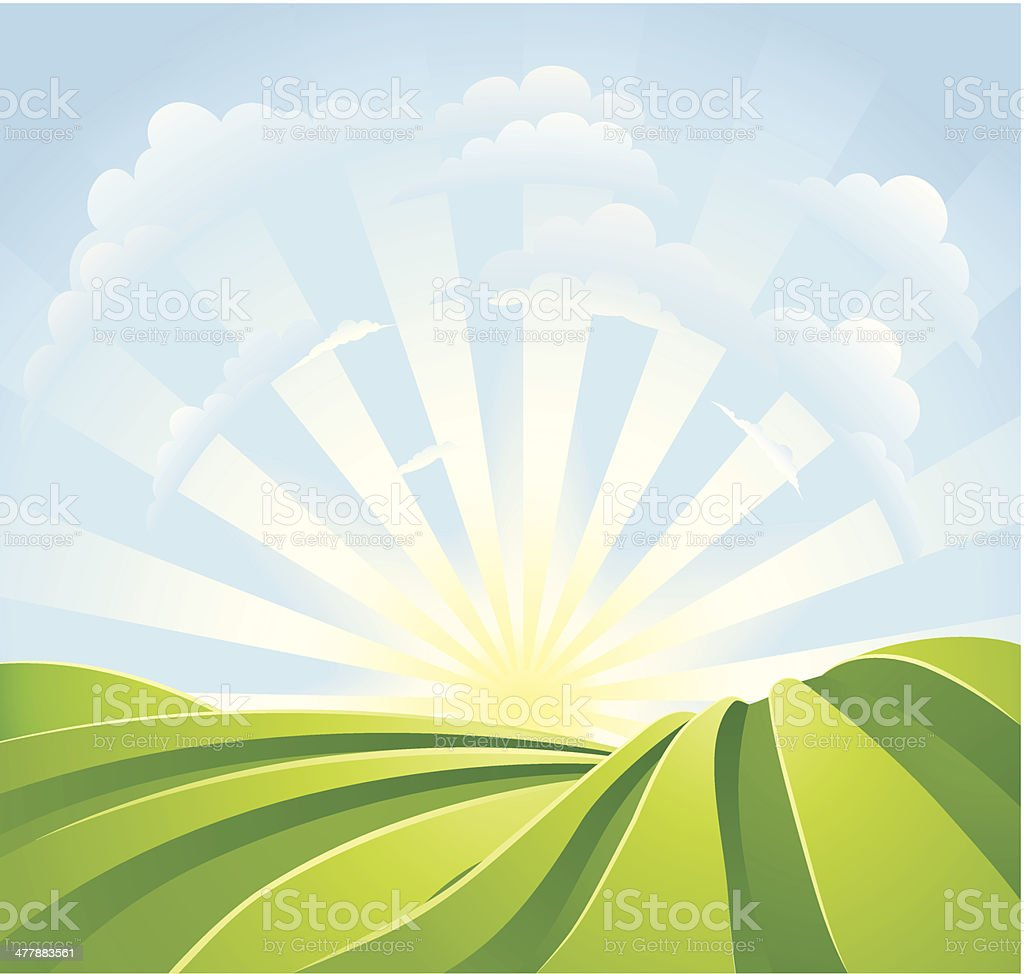Idyllic green fields with sunshine rays and blue sky vector art illustration