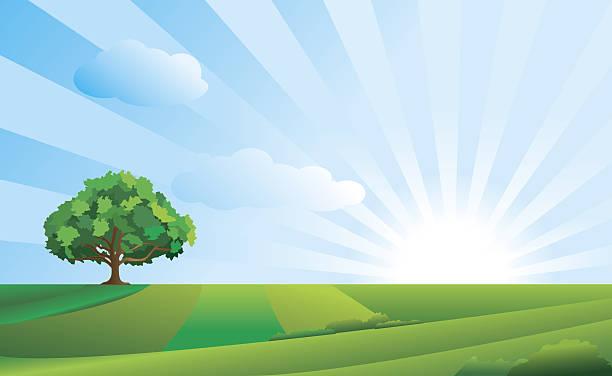 idyllic landscape - sunrise stock illustrations, clip art, cartoons, & icons