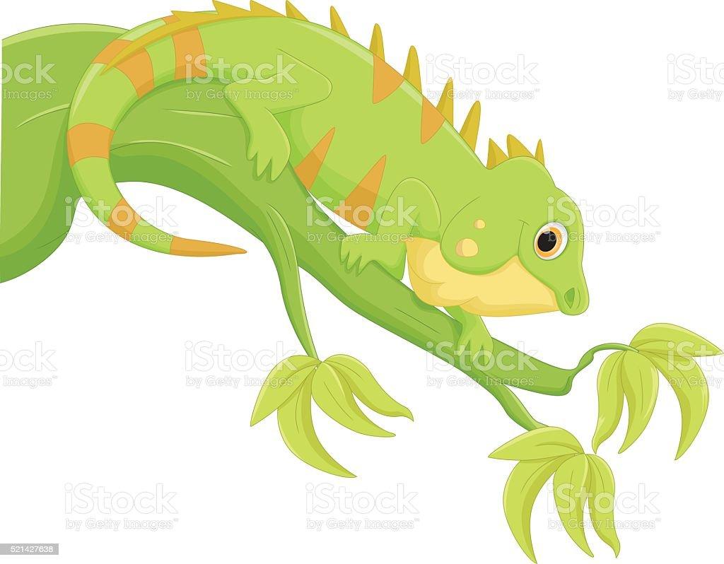 Ilustración De Iguana De Dibujos Animados Y Más Vectores Libres De