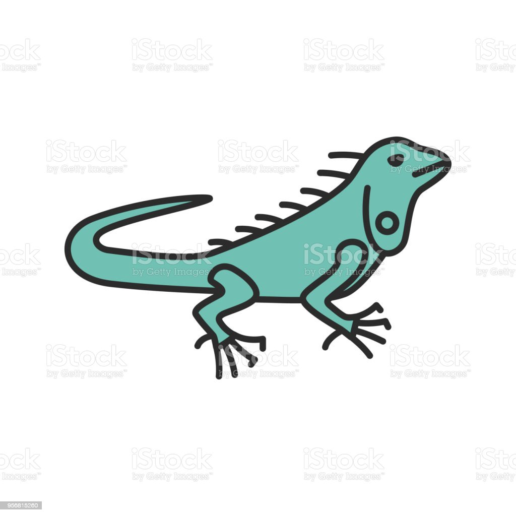 Iguana Icon Stock Vector Art & More Images of Animal 956815260 | iStock