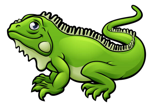 iguana lizard cartoon character - reptiles stock illustrations