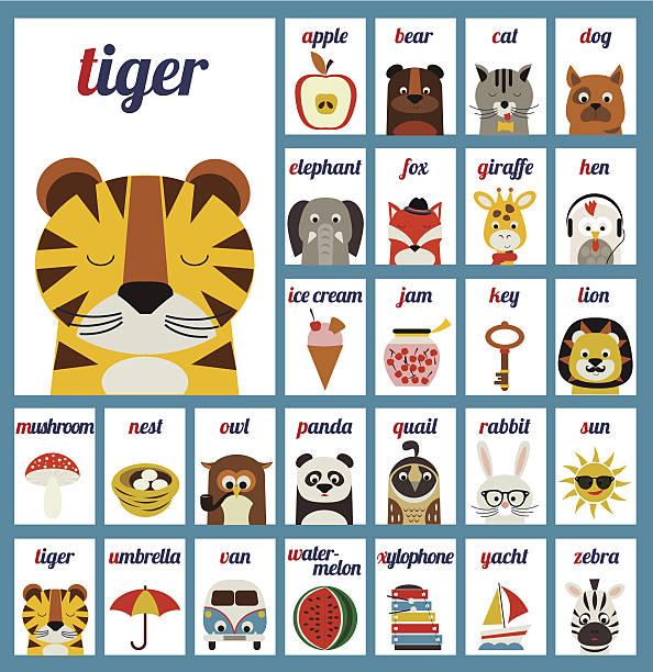 illustrierte alphabet buchstaben - englischlernende stock-grafiken, -clipart, -cartoons und -symbole