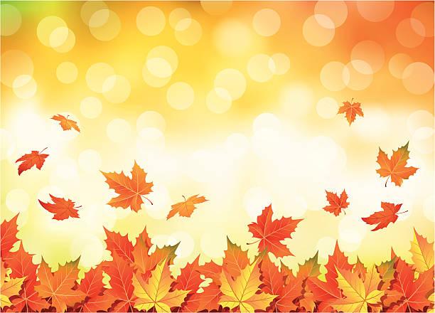 Illustrated autumn falling leaves background Autumn leaves falling. Vector illustration. fall background stock illustrations