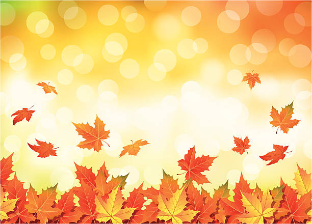 Illustrated autumn falling leaves background Autumn leaves falling. Vector illustration. autumn leaf color stock illustrations