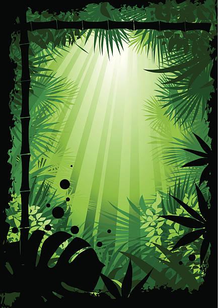 добро пожаловать в джунгли - four seasons stock illustrations