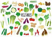 野菜のイラスト セット