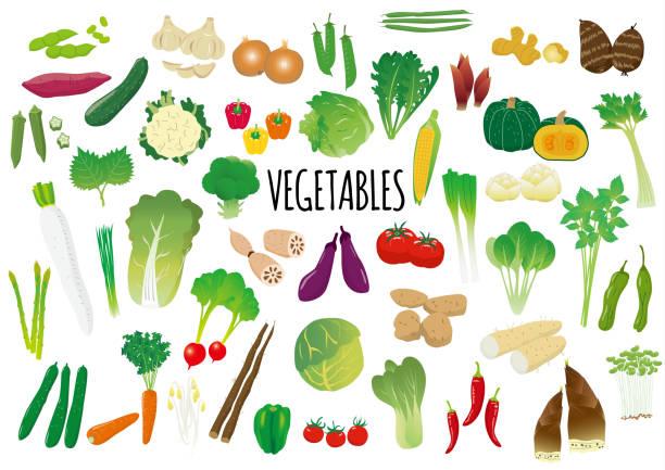 野菜のイラスト セット - 枝豆点のイラスト素材/クリップアート素材/マンガ素材/アイコン素材