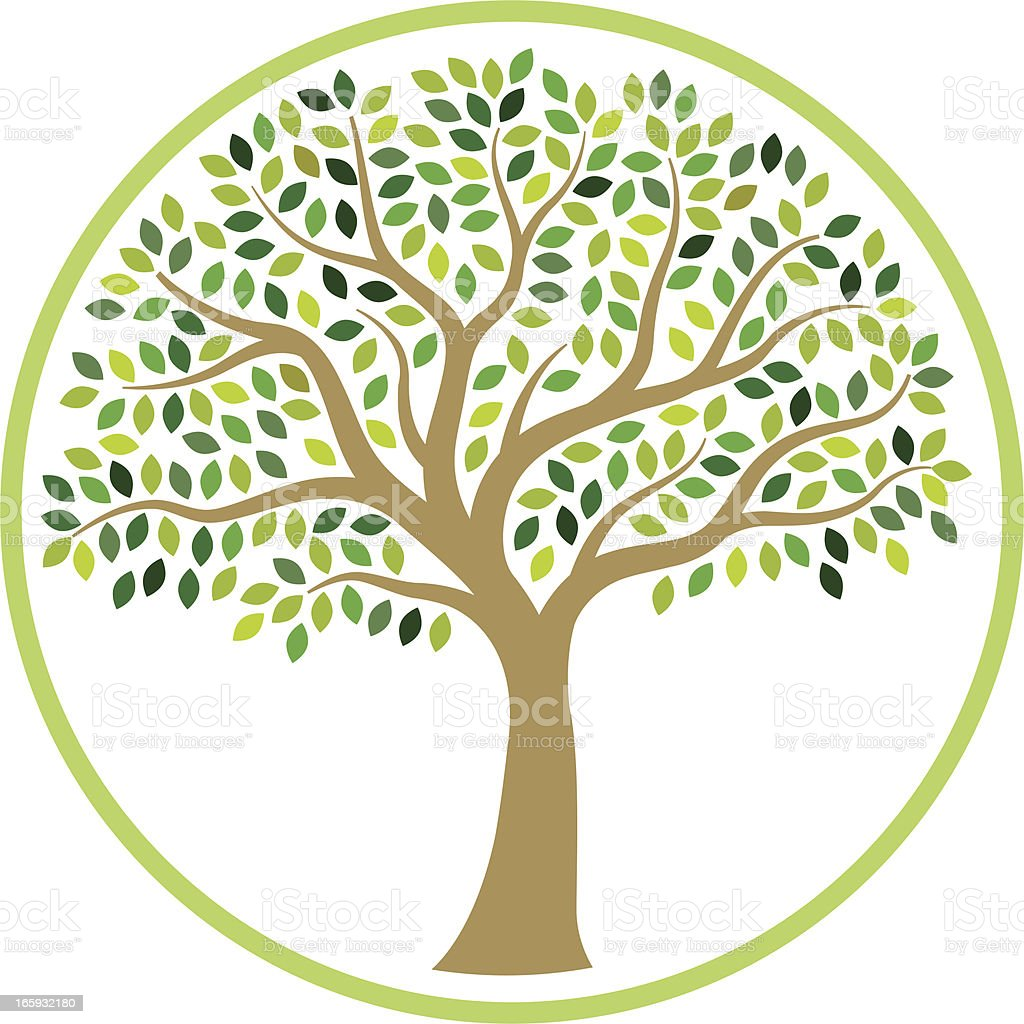 Illustrated tree in circle of green line  royalty-free stock vector art