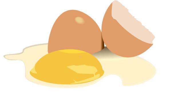 stockillustraties, clipart, cartoons en iconen met illustration broken egg - fresh start yellow