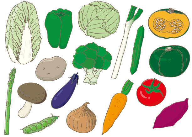 Illustration collection of full color vegetable icons. vector art illustration