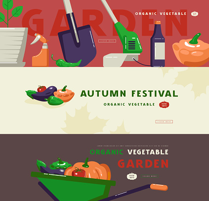 Illustration for autumn festival, gardening tools and vegetables