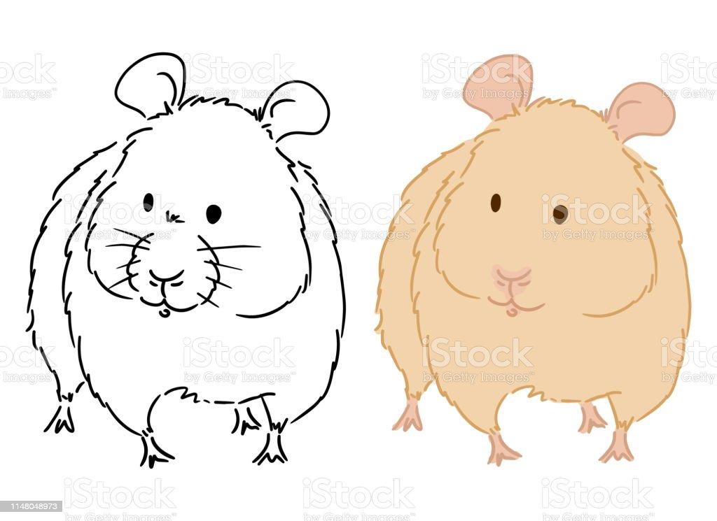 Beyaz Arka Planda Küçük Hamster Boyama Kitabı Için çizim