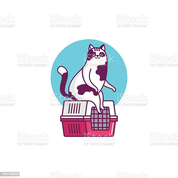 Illustration funny cat vector id544463838?b=1&k=6&m=544463838&s=612x612&h=nwyq5kymy2wabkzefl72q0uuei2xp2m4hi9xc9ikl5m=