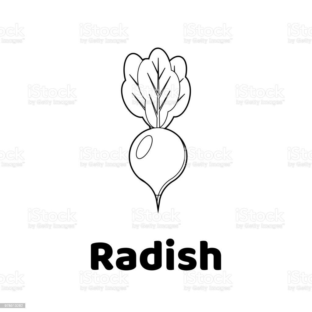 Illustration Game For Children Vegetable Coloring Page Radish Stock