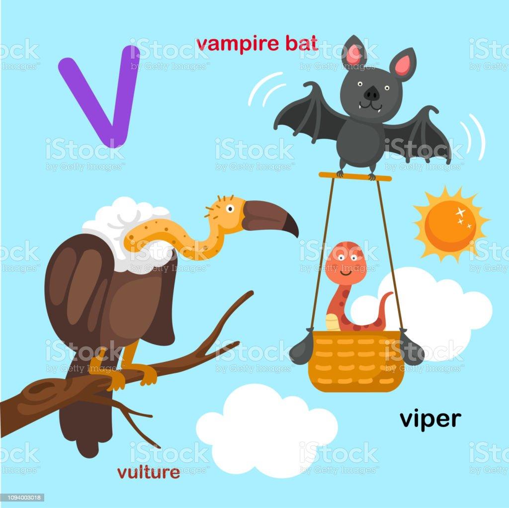Ilustración De Ilustración Aislado Alfabeto Letra Vvampiro