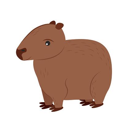 Illustration of a capybara. Rodent Capybara Character