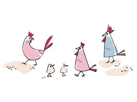 Illustration of a chicken, chicks and roosters in cartoon style