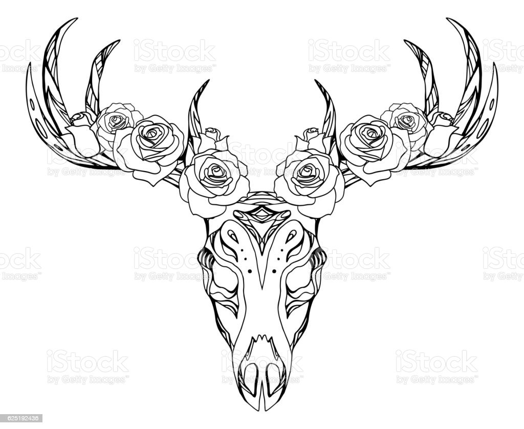 Illustration Of A Deer Skull With Roses And Boho Pattern Stock ...