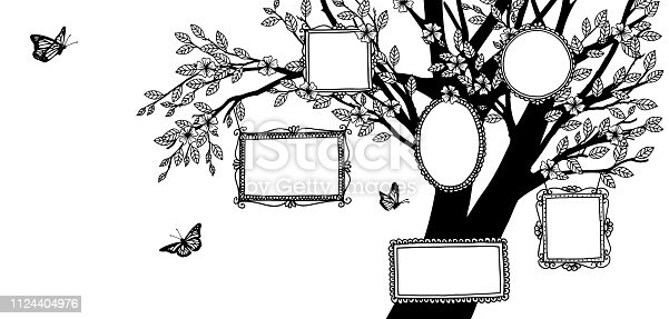 Hand drawn illustration of a family tree, banner with tree and empty picture frames