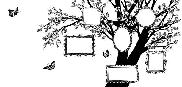 abbildung eines stammbaumes, schwarze und weiße zeichnung mit leeren rahmen und schmetterlinge - tierfotografie stock-grafiken, -clipart, -cartoons und -symbole